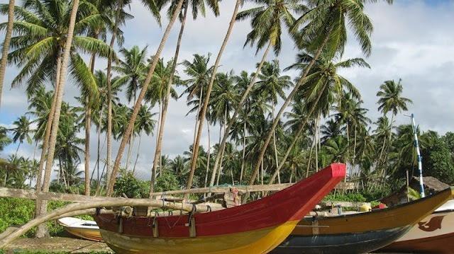 Шри-Ланка. Благословенная земля