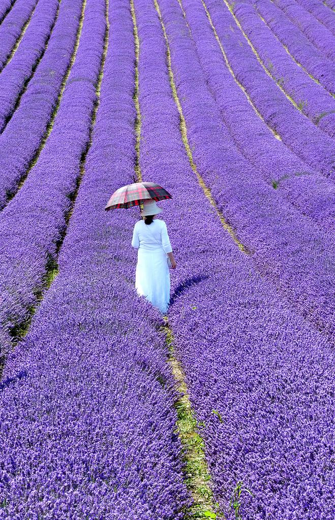 Красивые фотографии, Красивые фото природы, Фотографы мира и их работы, Фотопроекты, фотографии людей, Интересные фотографии,