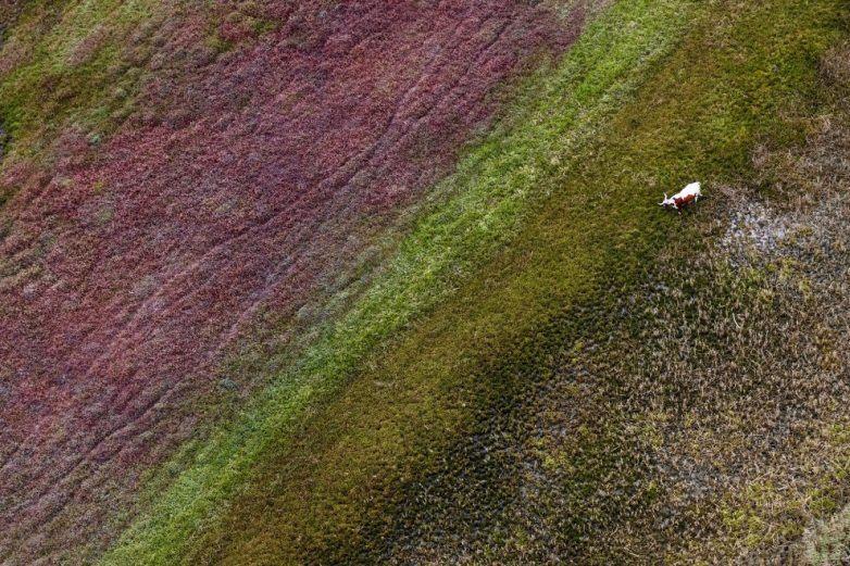 Полет над Южной Африкой от Зака Секлера