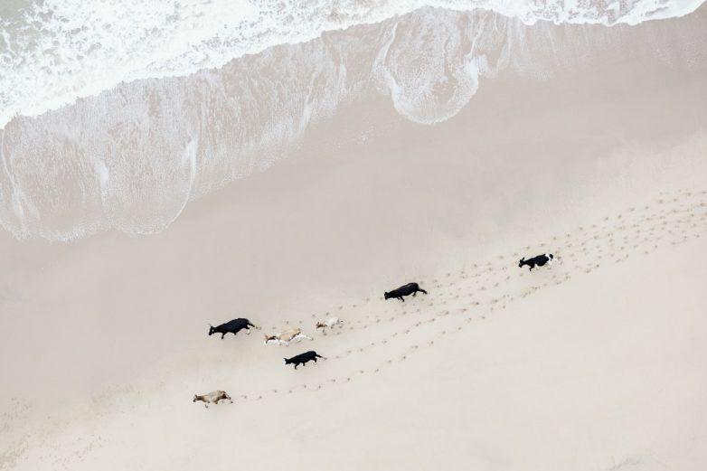 Фотографии Южной Африки с неба от фотографа Зак Секлер (Zack Seckler)