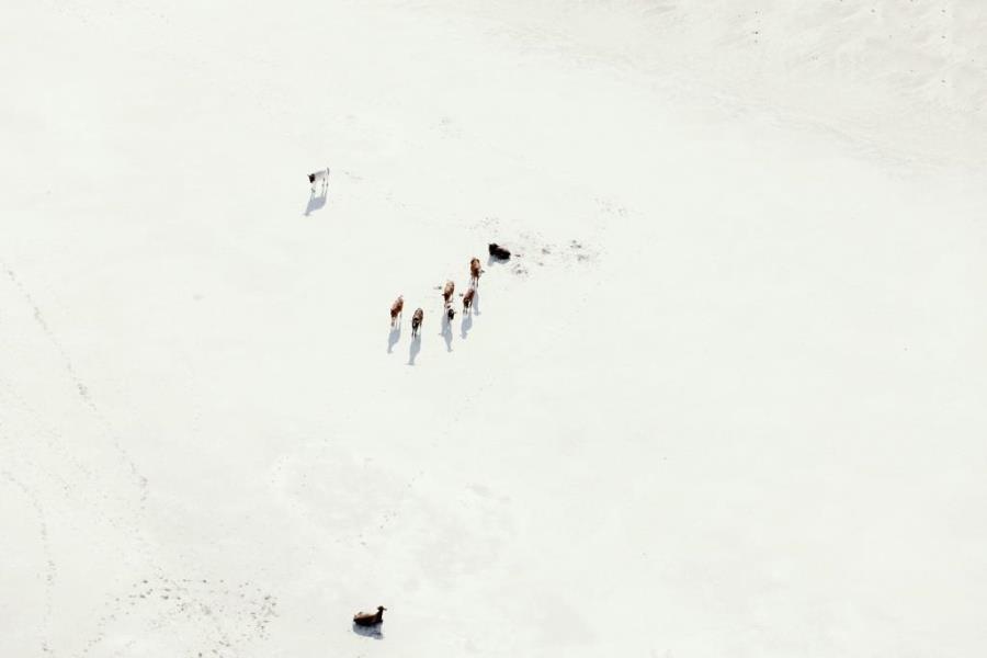 Aerial Botswana Зака Секлера
